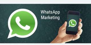 WhatsApp Marketing for your business today!