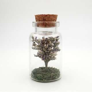 Dried Flower Gift