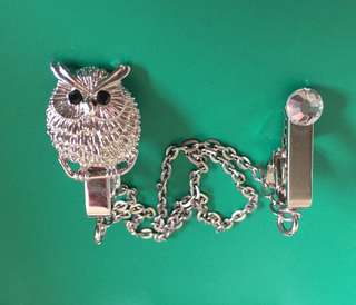 Owl clothes pin/clip