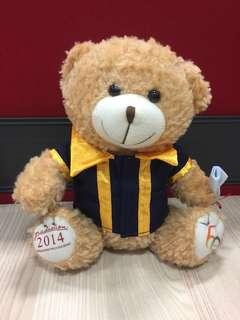 SP @ 60 graduation bear