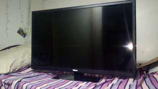 "Haier 32"" LED TV with FREE TV plus"