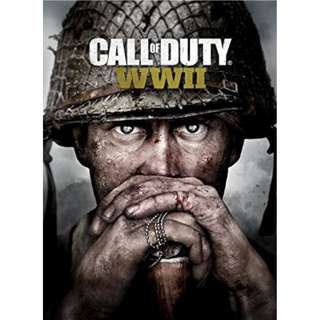 Call of Duty: WWII / World War II Offline with DVD (PC)