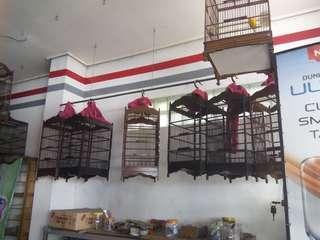 Sangkar jati no 3