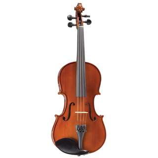 Violin (quarter-size for kids)