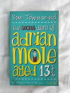 English Novel - the secret diary of Adrian Mole