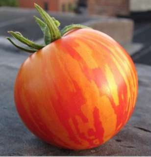 Striped Red & Yellow Organic Tomato Seeds