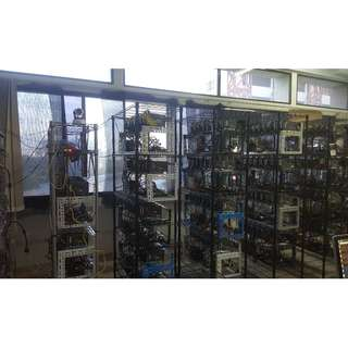 Hosting GPU/ASIC Mining Rig . MOST COMPETITIVE RATES . FLEXIBLE . EXPERIENCED