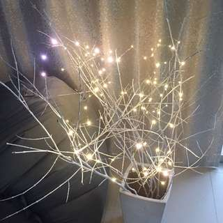 Hand Painted White Branches With Fairy Lights