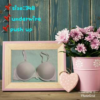 export quality branded bra
