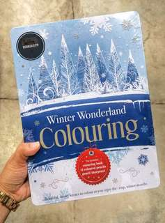 FREE SHIPPING! Winter Wonderland Adult Coloring Book + Color Pencils
