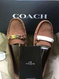 Coach Driving Shoes