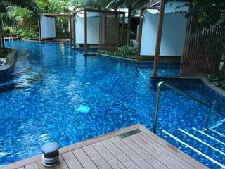 Swimming Lessons - Swimming Instructor - Swimming Coach - SG Sink Or Swim