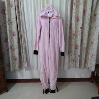 Adult onesie