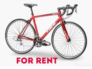 Road bike for rent