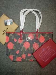Coach reversible with pouch