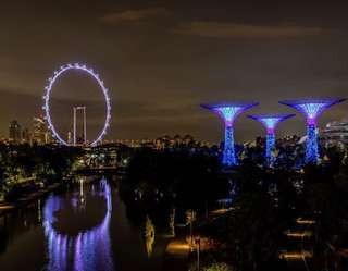2x Gardens By The Bay and Singapore Flyer Tour with 1 Way Transfer
