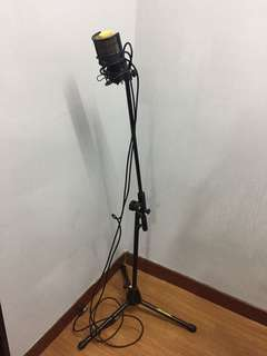 Condenser Microphone and Hercules Stand