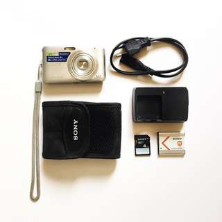 SONY Digicam/ Point and Shoot
