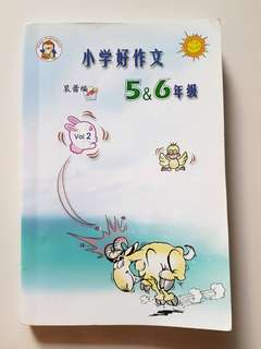 Primary 5/6 Chinese Composition book