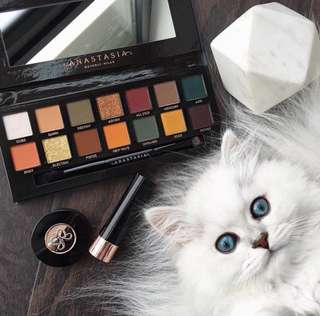 SALE❗️Subculture Anastasia Beverly Hills Eyeshadow Palette