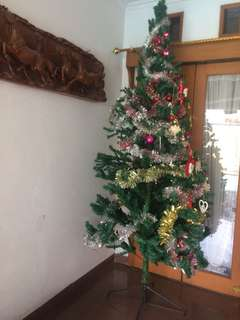 christmas tree 2,5 meter tall