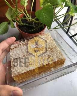 Sarang Madu Lebah