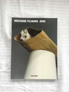 Wolfgang Tillmans Burg