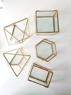 Gold geometric terrarium/ring boxes