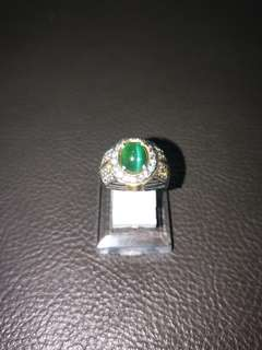 Green Apatite Cateyes (with CERT)