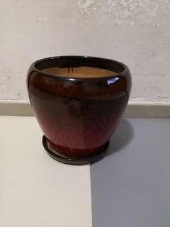Vase陶瓷花盆(17cm)