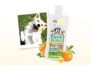 Natural Pet Shampoo for DOGS & CATS (Sale)