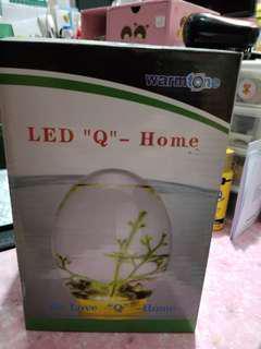 透明小型魚缸 (LED底燈)