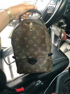 Authentic Louis Vuitton vintage palm springs MM backpack
