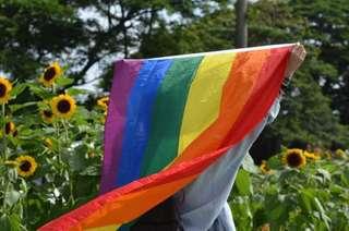 LGBTQ+ Pride Flags