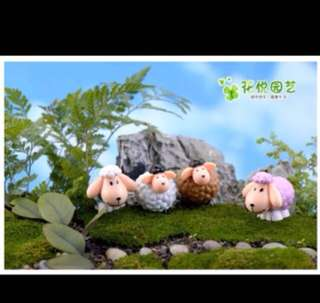 Terrarium Miniature: SHEEP