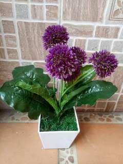 Artificial bunga pompom + pot melamin putih