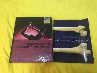 Martini's Anatomy and Physiology