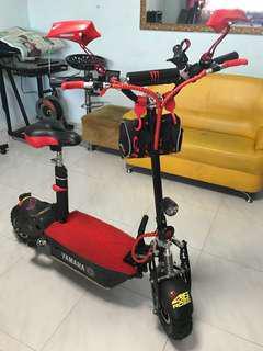 EVO 1000W 48V