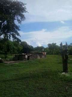 farm lot for sale in santa fe bantayan island!