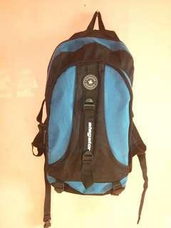 Eleagator Bagpack or Travelling Bag