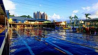 🚚 大新店游泳池票