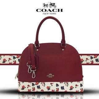 Authentic Quality Coach