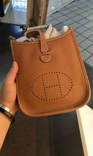 Hermes Evelyn TPM