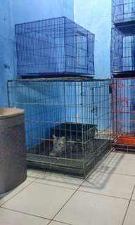 5 Kandang Kucing, Anjing Kecil, Musang, Sugar Glider, Burung, Ungu Ukuran 60cm