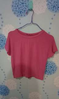 Zara Pink Crop Top