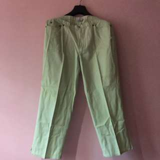 Mint green capri pants