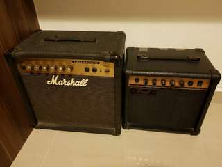 Electric Guitar and Bass Amplifier