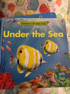 Usborne lift and look (Under the sea)