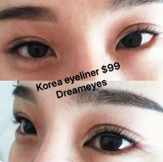 Korea eyeliner promotion $99
