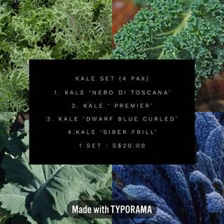 🚚 Kale Seeds Family pack (Set of 4)